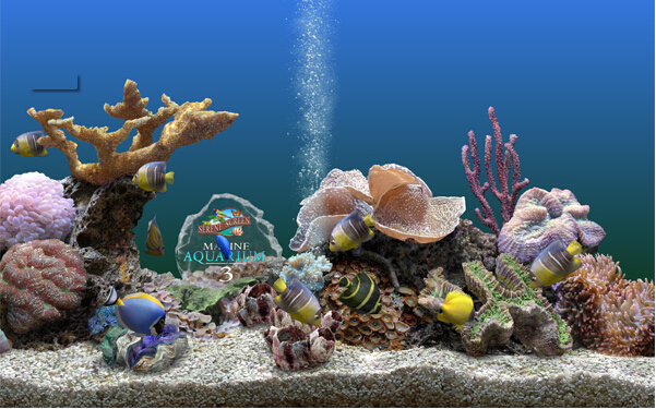 深海世界3d屏保,探秘仙境一般的深海世界|『精品软件