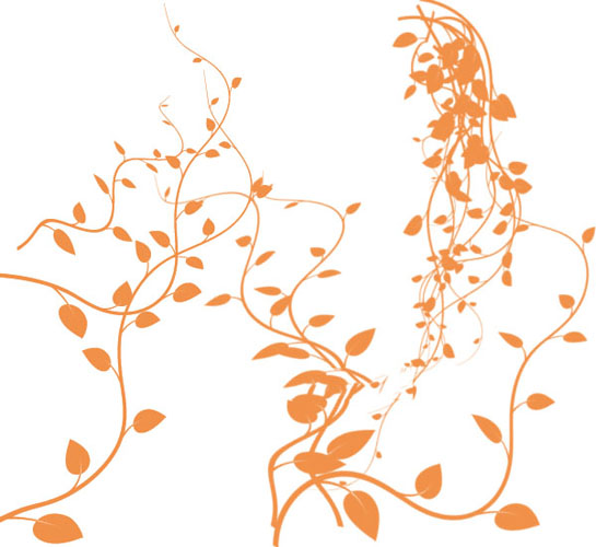 藤蔓的画法步骤图