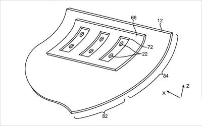 画苹果内部结构图
